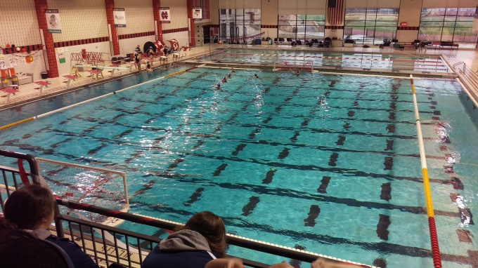 The Wild World Of Water Polo